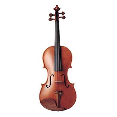 Picture for category String Instruments